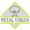 PICUAL VIRGEN